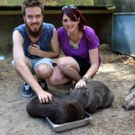 A Day at Healesville Sanctuary