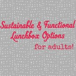 Sustainable and Functional Lunchbox Options for Adults