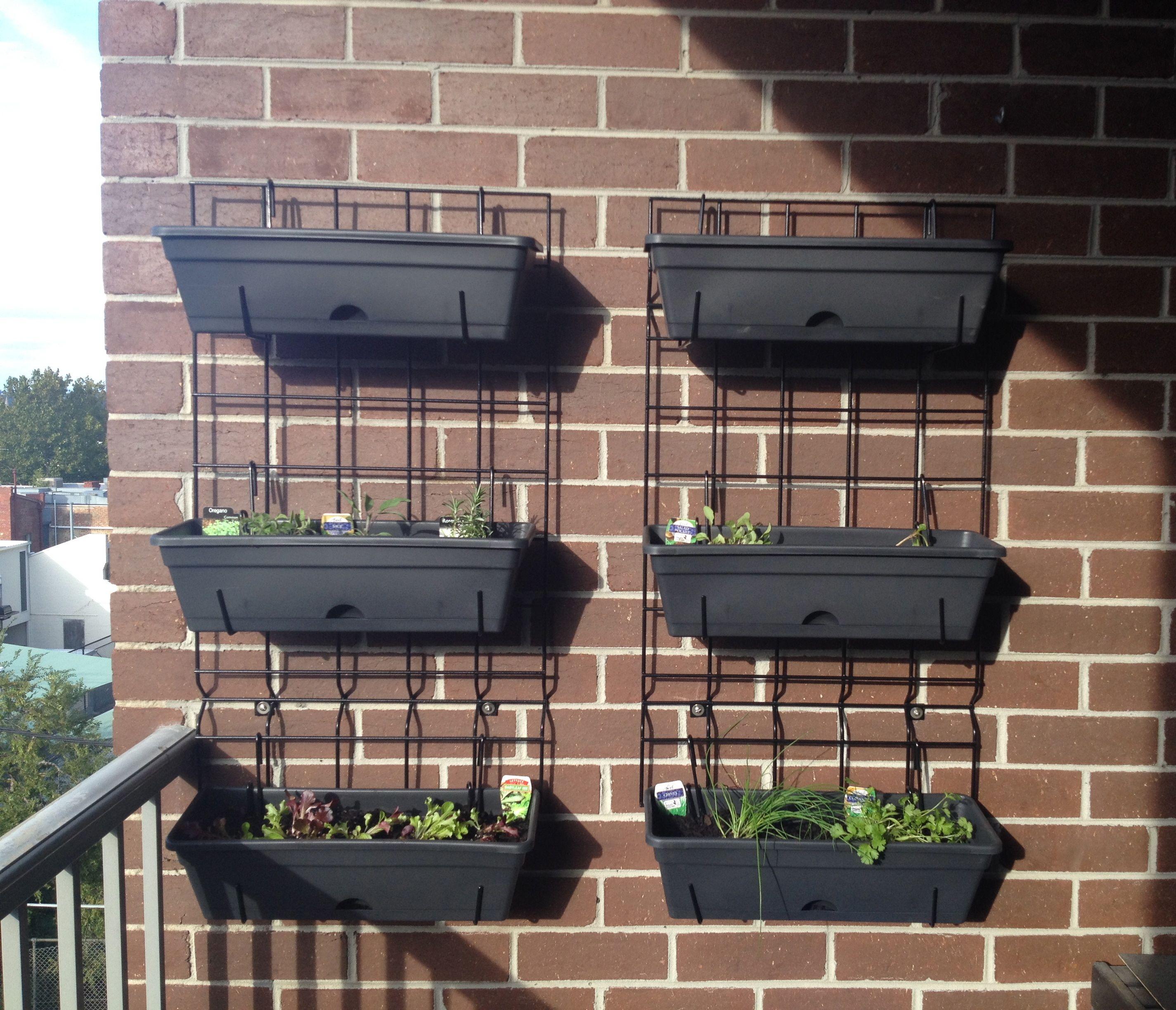 balcony wall garden Balcony Gardening Freestanding Vertical Garden Edition
