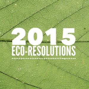 2015 Eco-Resolutions