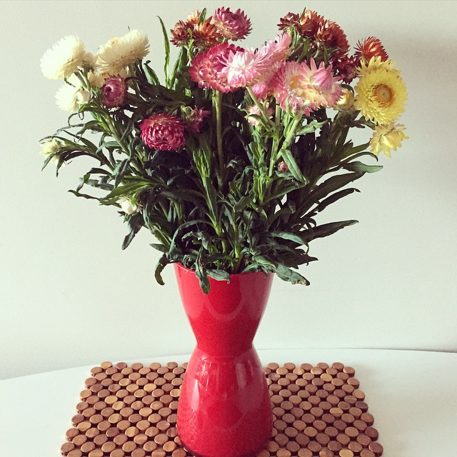 When your heart gets broken buying yourself flowers is an excellent idea #flowers #suckysaturday
