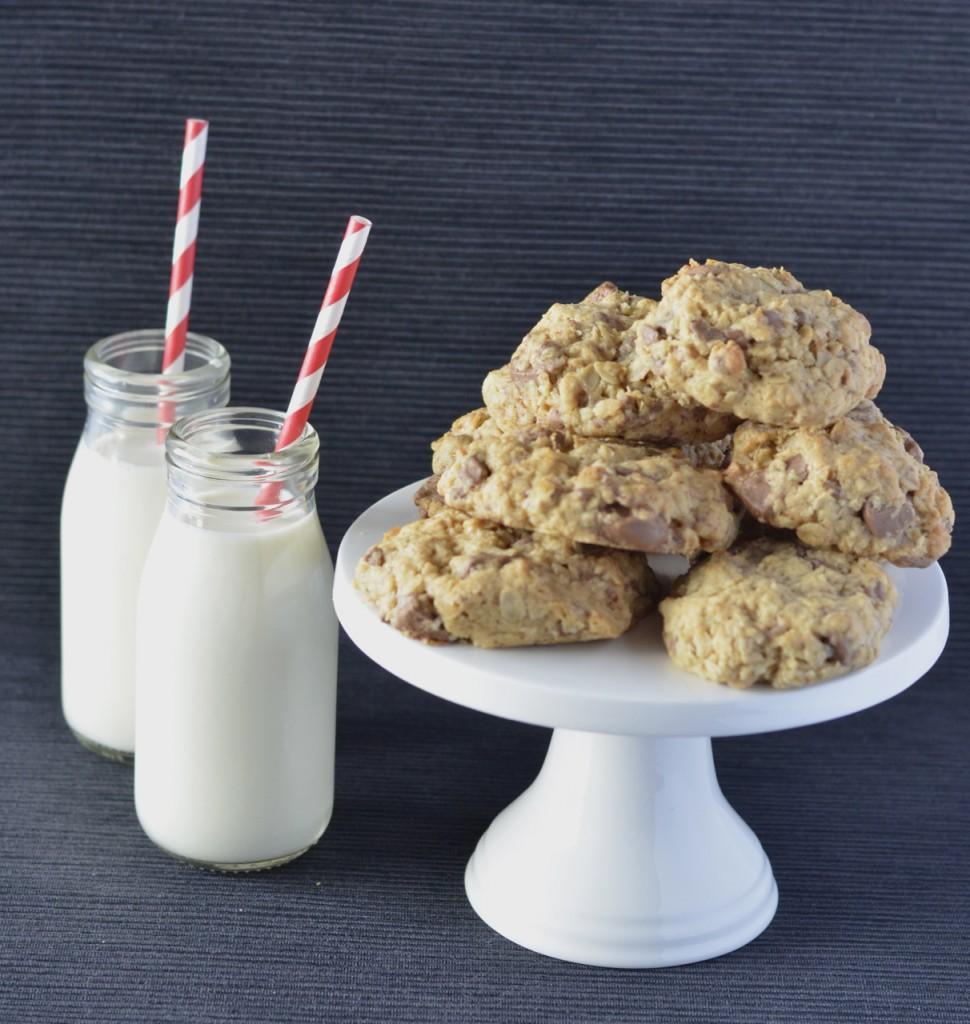 Choc-oat cookies
