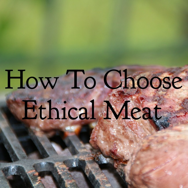 How to Choose Ethical Meat | I Spy Plum Pie