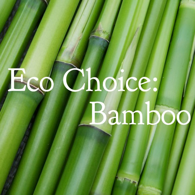 Eco Choice: Bamboo | I Spy Plum Pie