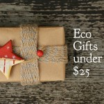 Eco Gifts Under $25