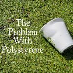 The Problem with Polystyrene