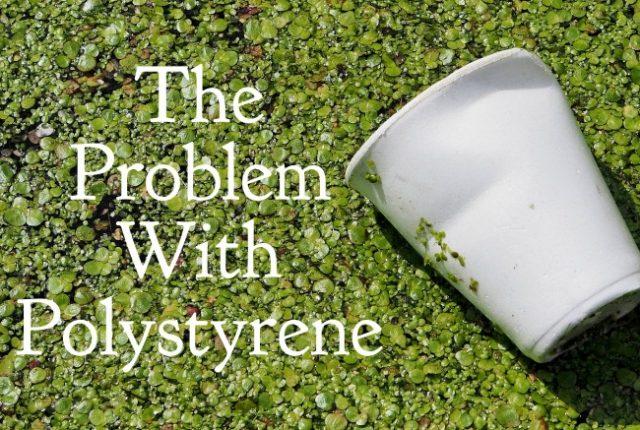 The Problem with Polystyrene | I Spy Plum Pie