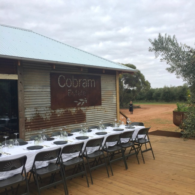 A Day At Cobram Estate | I Spy Plum Pie