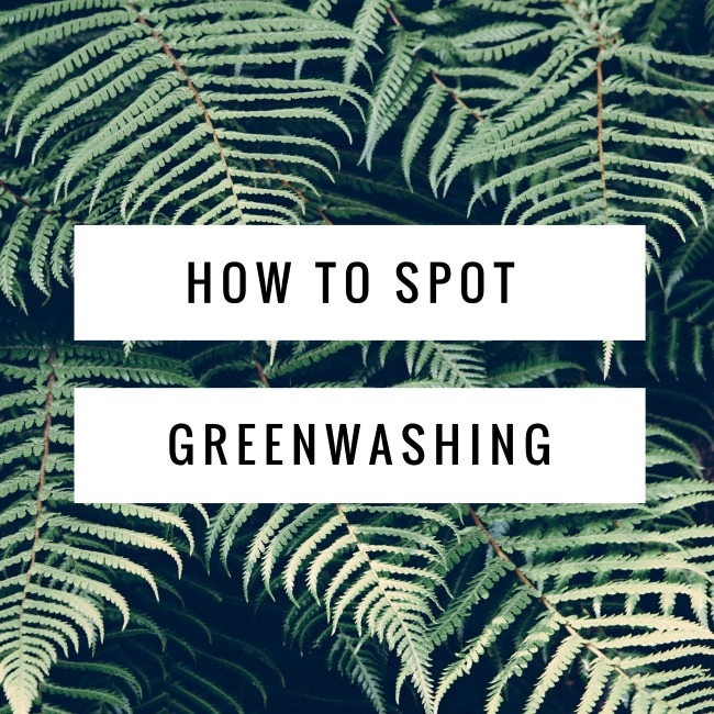 How to Spot Greenwashing | I Spy Plum Pie