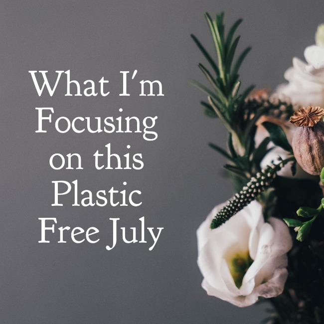 What I'm Focusing on this Plastic Free July | I Spy Plum Pie