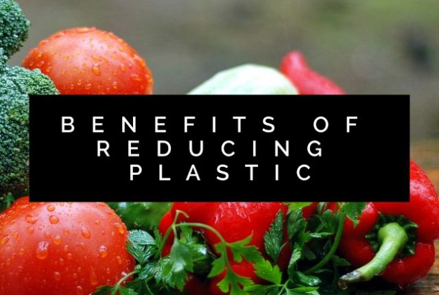 Benefits of Reducing Plastic | I Spy Plum Pie