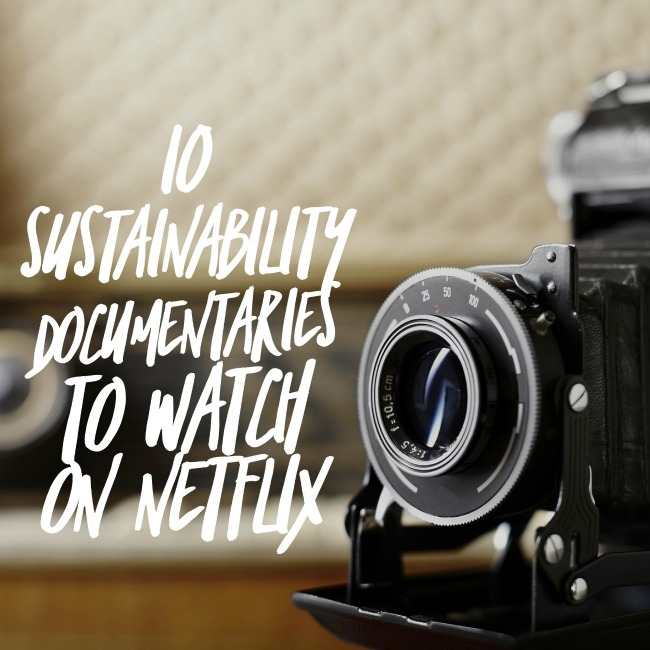 10 Sustainability Documentaries To Watch On Netflix