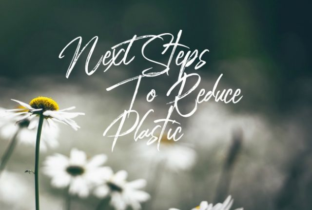 Next Steps to Reduce Plastic | I Spy Plum Pie