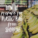 How To Prepare For Plastic Bag Free Shopping