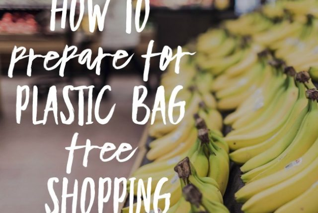 How To Prepare for Plastic Bag Free Shopping | I Spy Plum Pie
