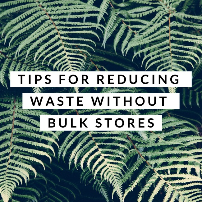 Tips for Reducing Waste Without Bulk Stores | I Spy Plum Pie