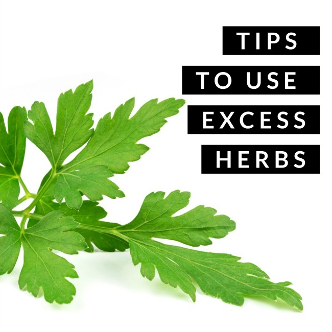 Tips to Use Excess Herbs | I Spy Plum Pie