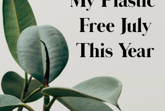 My Plastic Free July This Year | I Spy Plum Pie