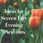 Ideas for Screen Free Evening Activities
