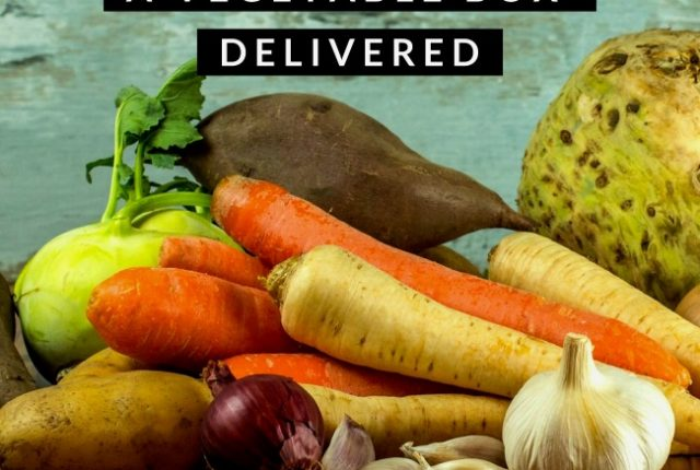 Benefits of Getting A Vegetable Box Delivered | I Spy Plum Pie