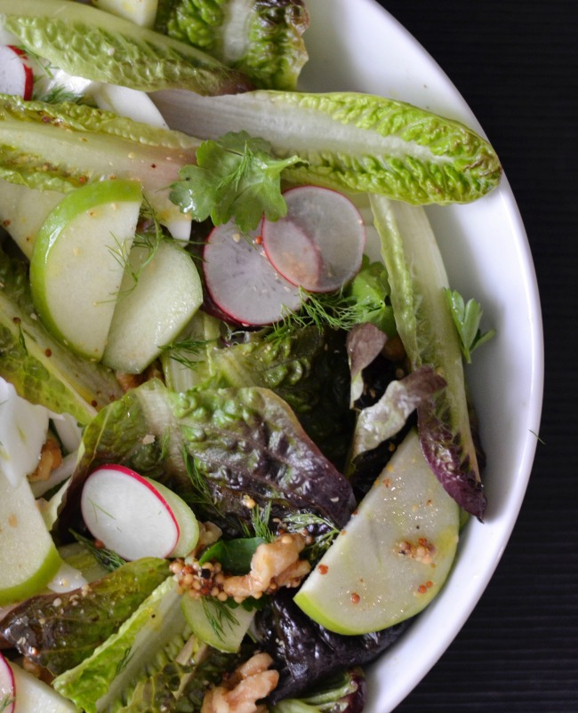 Fennel Radish Apple Salad | I Spy Plum Pie