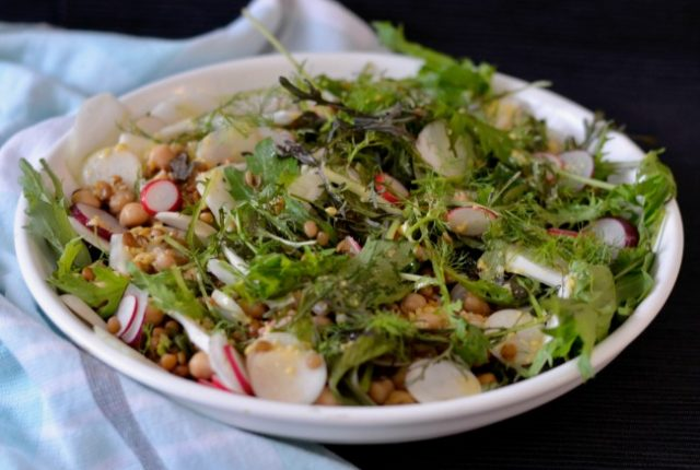 Lentil Chickpea Radish Salad | I Spy Plum Pie