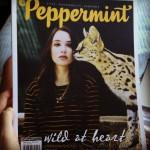 Sustainable Magazines