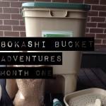Bokashi Bucket Adventures: Month One