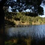 Weekend Adventures: Daylesford