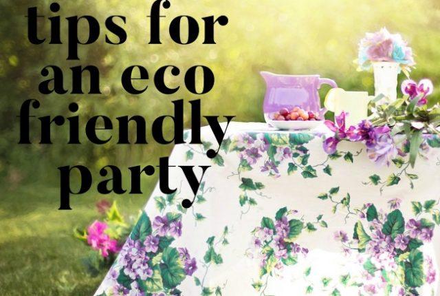 Tips for an Eco Friendly Party | I Spy Plum Pie