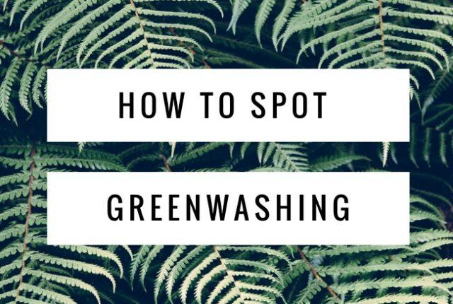 How to Spot Greenwashing | I Spy Plum Pie