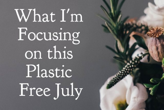 What I'm Focusing on this Plastic Free July | I Spy Plum Pie