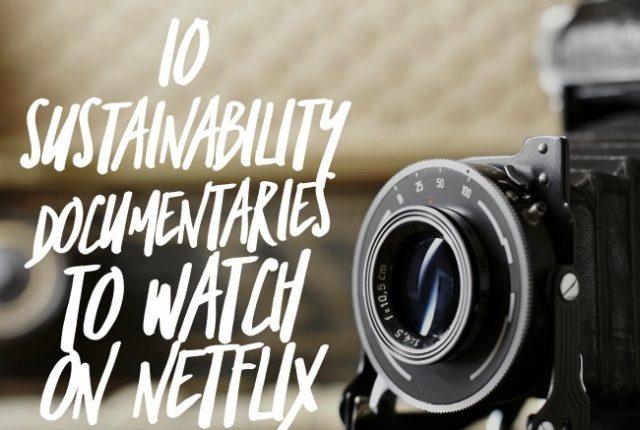 10 Sustainability Documentaries to Watch On Netflix | I Spy Plum Pie