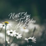 Next Steps to Reduce Plastic