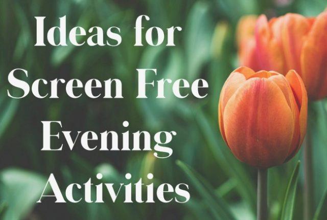 Ideas for Screen Free Evening Activities | I Spy Plum Pie
